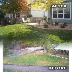 Featured Back Yard with Sod Plants Before and After