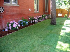 Historic Denver Home Small Back Yard Makeover 1