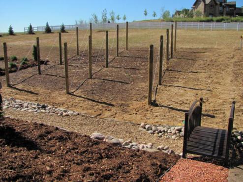 Castle Phase 1 Landscape Bridge/Vineyard