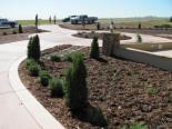 Broomfield landscaping - Castle Phase 1 Landscape Driveway