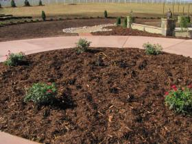 Broomfield Landscaper Project