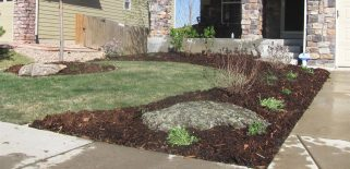 Early Spring Makeover Boulder, Colorado landscaping project