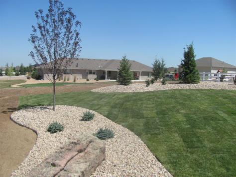 Brighton Colorado Landscaper - multiple tree install