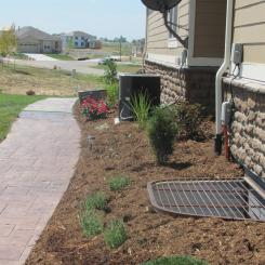 Plantings to Eventually Hide Utilities