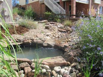 Pond With Stream