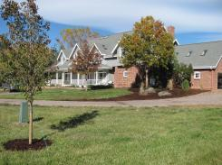 Country Corner with Chanticleer Pear