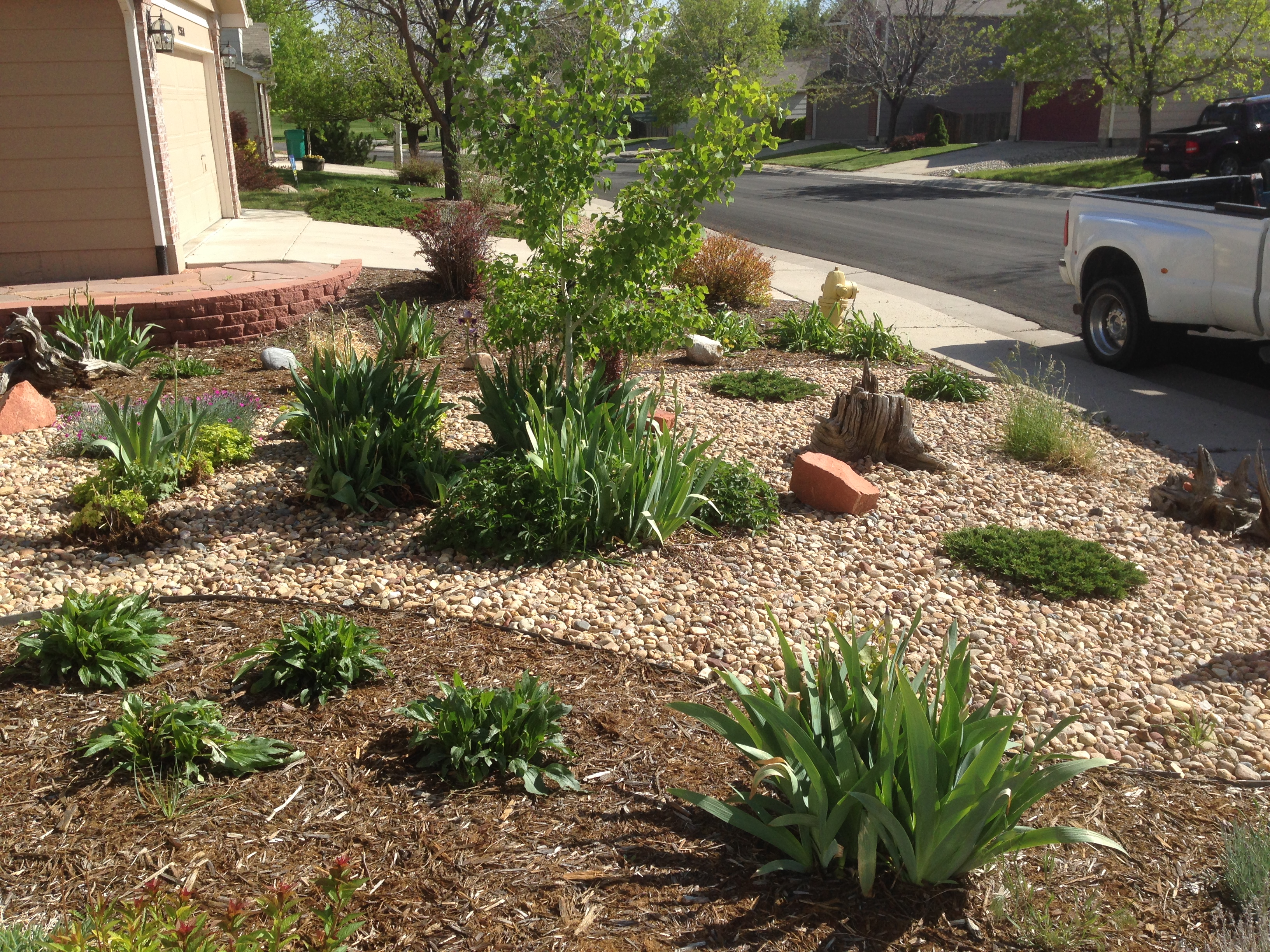 broomfield co rock garden xeriscape design – glacier view