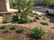 Rock garden design located in Broomfield Colorado