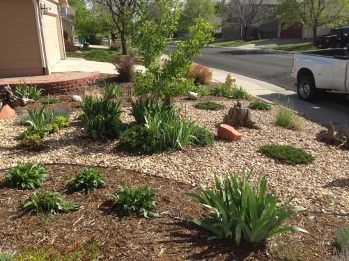Rock garden design located in Broomfield Colorado
