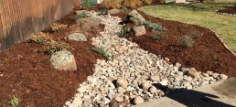 Dry riverbed added to front yard with moss rock boulders and perennials in Erie, CO.
