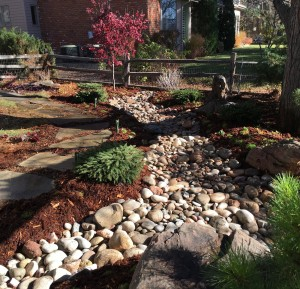 Dry Riverbed with groundcover and shrubs in a shade environment in Boulder Country Club, Boulder, CO