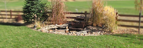 720x245-grass-water-feature-IMG_1344