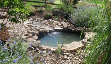 Pond-With-Stream