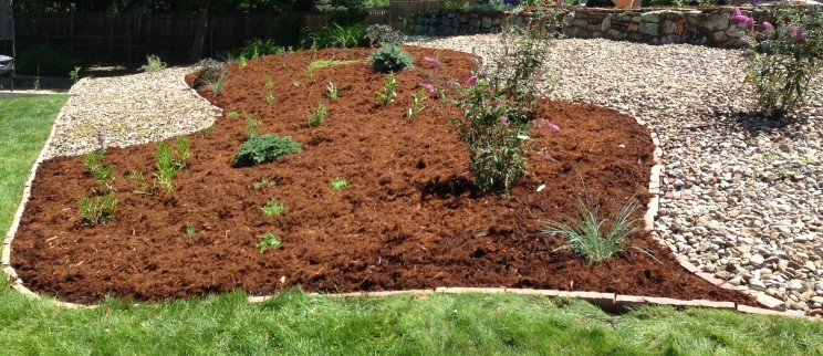 Boulder-Colorado-landscaping-IMG_3208