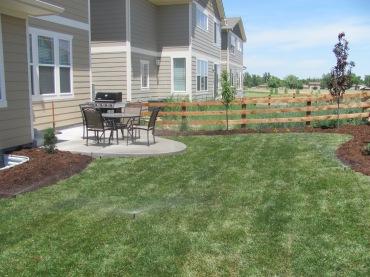 New back yard