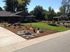 Front Yard Makeover 3 Months After Install Boulder