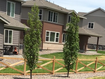 Boulder CO landscape design