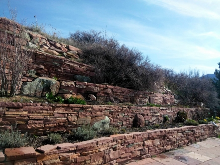 Stone Wall and Perennials - Boulder and Firestone, Colorado