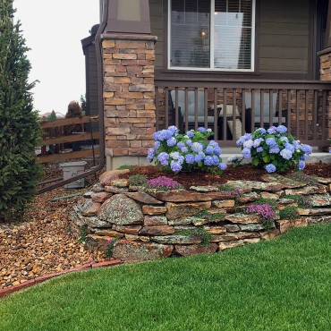 3809 Moss Rock Wall and Hydrangeas-Erie-CO-landscaping-Garden Design
