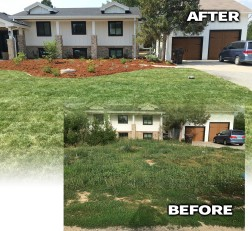 before after landscaping project