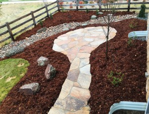 Back Yard Makeover, Broomfield, CO add to Landscape Makeovers Page