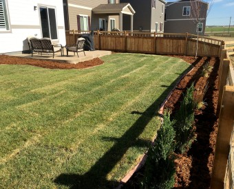 Frederick, Colorado - New Back Yard landscaping project
