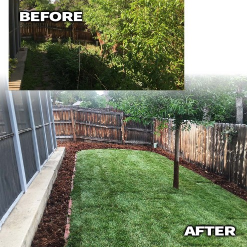 Jungle yard After-Longmont-COLORADO-landscape Contractor