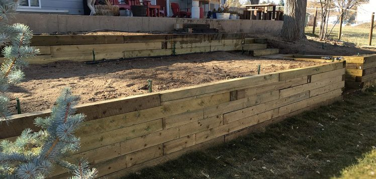 timber-retaining-wall-with-stairs-louisville-colorado-landscaping-job