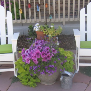 Landscaping, Garden and outdoor spaces Accessories